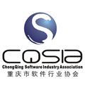 重庆软件协会