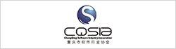 重庆市软件行业协会
